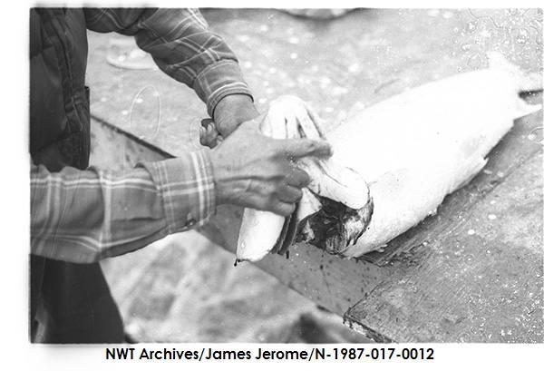 N-1987-017: 0012